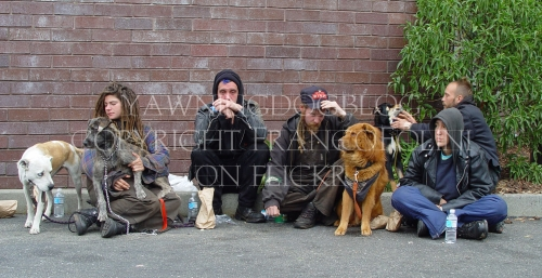HomelessGroupWithDogsFrancoFoliniOnFlickr